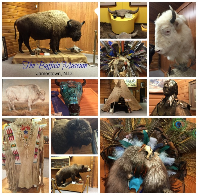 buffalo museum collage.jpg
