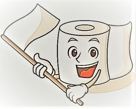 toilet paper 2.jpg